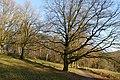 Duivelsberg P1420677.jpg