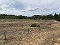 Dunes Charmes Sermoyer 19.jpg
