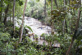 Dunns River Falls wide Photo D Ramey Logan.jpg