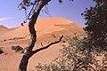 Dunst Namibia Oct 2002 slide126 - grandios.jpg