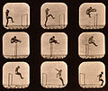Eadweard Muybridge - Athletes. Walking High Leap (sepia).jpg