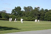 Ebernoe Cricket Pitch - geograph.org.uk - 44629.jpg