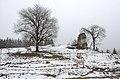 Eberstein Sankt Oswald Saualpenstrasse Ruine Gillitzstein 21022014 126.jpg