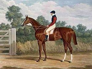 Elis (horse) - Elis', the Winner of the Great St. Leger Stakes at Doncaster, 1836 by John Frederick Herring
