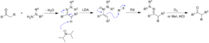 Enders SAMP/RAMP hydrazone-alkylation reaction - Mechanism of hydrazone alkylation