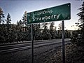 Entering Strawberry.jpg