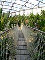 Eroeffnung Gondwanaland Haengebruecke.jpg