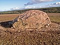 Erratic near the Moyness Cairn - geograph.org.uk - 266420.jpg