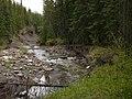 Etherington Creek Provincial Recreation Area, Alberta, Canada - Feeder Creek.jpg