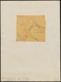 Euphonia concinna - 1854 - Print - Iconographia Zoologica - Special Collections University of Amsterdam - UBA01 IZ15900419.tif