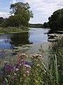 Exeter Canal - geograph.org.uk - 553910.jpg