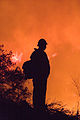 FEMA - 33312 - Firefighter at Poomacha fire in California.jpg