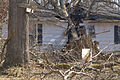 FEMA - 40050 - House damaged by a tree in Kentucky.jpg
