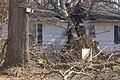 FEMA - 40050 - House damaged by a tree in Kentucky.jpg