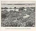 FMIB 36886 Recif d'Huitres Portugaises, pres de La Rochelle.jpeg