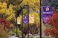Fall 2012 WNMU campus.jpg