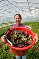 Fall Line Farms, cooperative, co-op, Richmond, VA. - Flickr - USDAgov (1).jpg