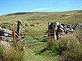 Farm gate beside a mountain road - geograph.org.uk - 217113.jpg