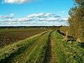 Farmland Track - geograph.org.uk - 267445.jpg