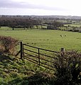 Farmland View - geograph.org.uk - 312685.jpg