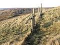 Fence below James's Thorn - geograph.org.uk - 1065188.jpg