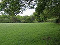 Field and woodland - geograph.org.uk - 440972.jpg