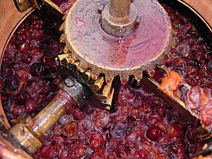 Slivovitz - Image: Filling the cauldronsljiveplumsr akija