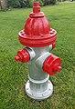 Fire hydrant 2 2 (cropped).jpg