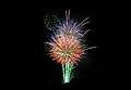 Fireworks - panoramio (3).jpg