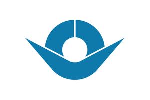 Hashimoto, Wakayama - Image: Flag of Hashimoto, Wakayama