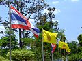 Flag of Thailand with the flag of Rama IX's 80th birthday cerebration.JPG