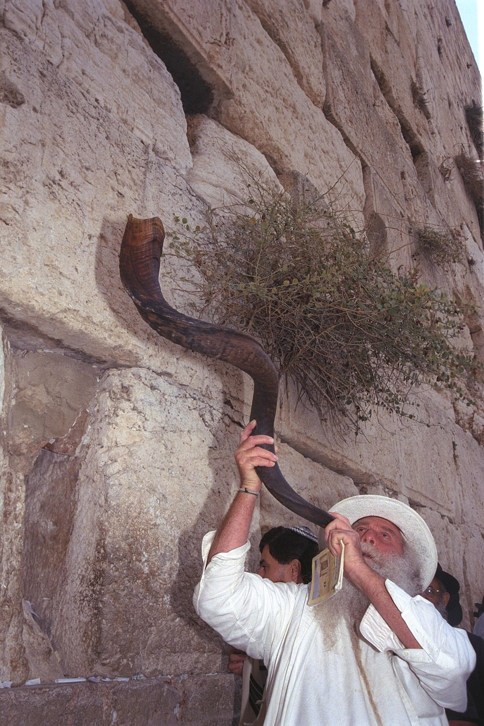 Flickr - Government Press Office (GPO) - Blowing the Shofar at the Western Wall