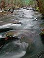 Flickr - Nicholas T - Babb Creek (2).jpg