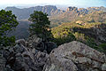 Flickr - ggallice - View from Emory Peak.jpg