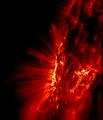 Flipped Sunspot Trace.PNG