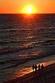 Florida Sunset (2273546390).jpg
