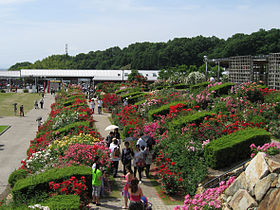 Flower Festival Commemorative Park02.jpg