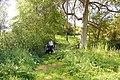 Footbridge over the River Ter - geograph.org.uk - 1319011.jpg