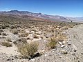 Foothills of the Silver Peak Range sloping east into the Clayton Valley, Esmeralda Co., NV - panoramio.jpg