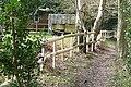 Footpath in Roundwood Copse - geograph.org.uk - 1202383.jpg