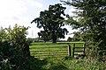 Footpath to Rushbrooke - geograph.org.uk - 245285.jpg