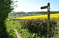 Footpath to the River Wye, nr Foy (17273138626).jpg