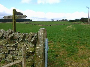 English: Footpath up to Greenlee The footpath ...