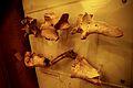 Fort-loudoun-animal-bones-tn1.jpg