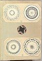 Four Designs for Decorated Plates and a Quatrefoil Rondel MET DP827463.jpg