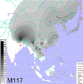 Frequencies of Y-DNA haplogroup O3-M117.png