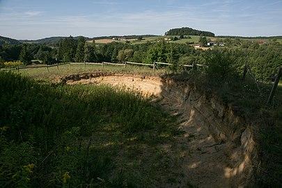 GS- Bienenfresser Sandgrube 016.jpg