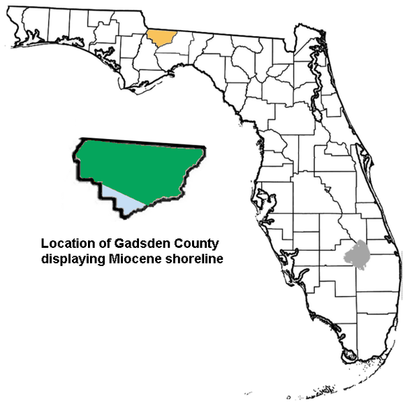 map 0f united states with Gadsden County  Florida Paleontological Sites on Wilton ct together with Camden sc as well Haubstadt in in addition Thematic Maps further Ningaloo Reef 2.