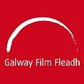 Galway Film Fleadh (Large).jpg