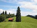 Garmisch-Partenkirchen - hill.jpg
